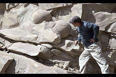 Hallan huevos de dinosaurio más grandes del mundo