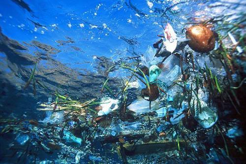 Plástico: la principal amenaza de los océanos