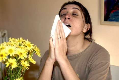 Tips para evitar las alergias en el trabajo