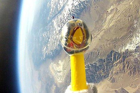 VIDEO: Pollo de goma es el nuevo astronauta de la NASA