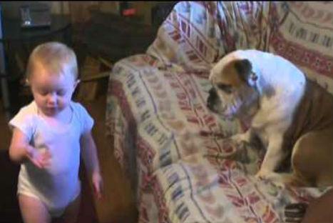 Divertido: Una bebé discute con su perro (VIDEO)
