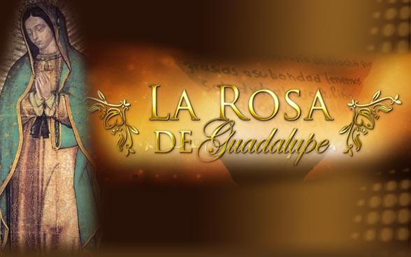 Cuatro razones de por qué La Rosa de Guadalupe es un éxito en nuestro país