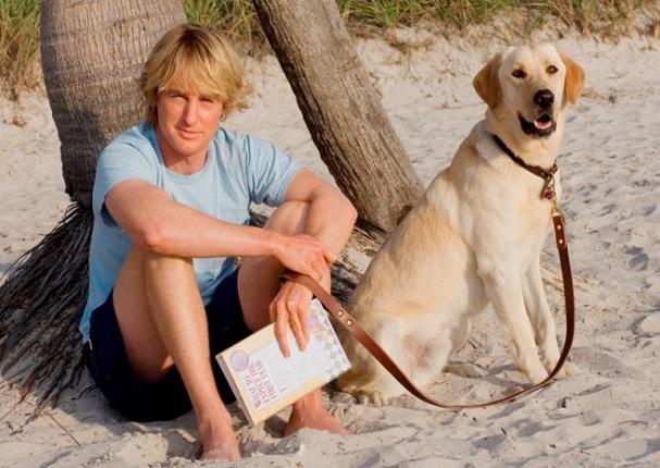 ¡Confirmado! Los hombres que aman a los perros son más atractivos para las mujeres