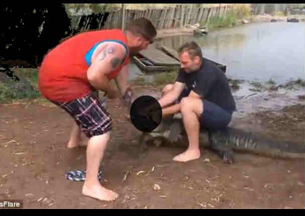 YouTube:  Cocodrilo le arrancó el dedo a un turista