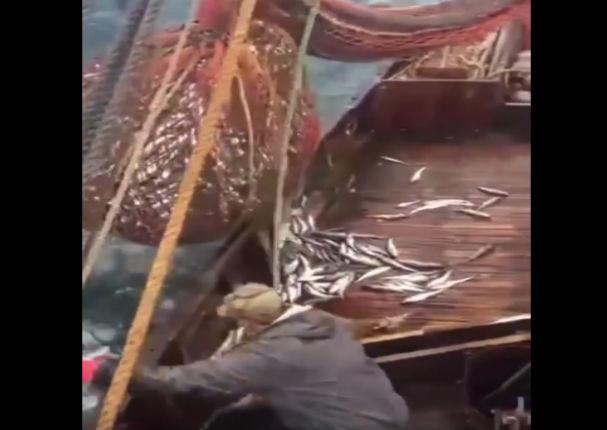 YouTube: Esta es el pesca más extraña que verás