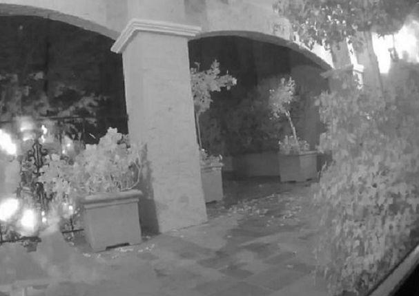 Facebook: Algo espeluznante apareció en su jardín - VIDEO