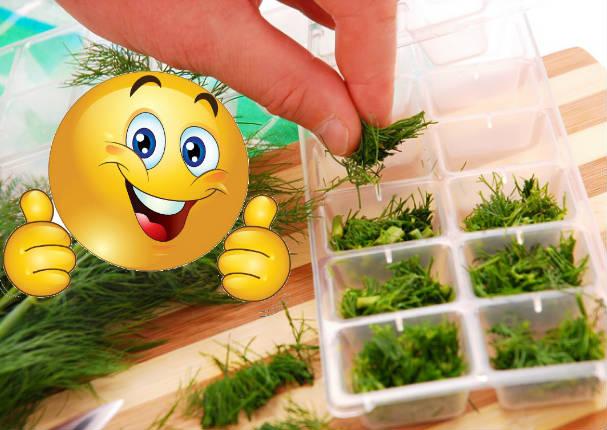 ¿Lo sabías? Sigue este truco para mantener tus hierbas intactas