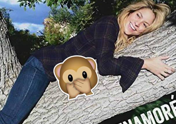Cibernautas hacen llorar a Shakira con esta burla - FOTOS