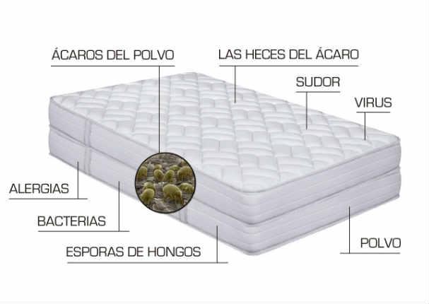 ¡Increíble! Elimina las bacterias de tu colchón así de fácil