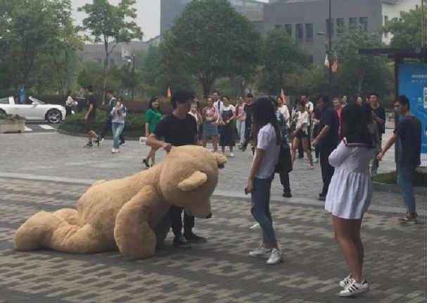 Quiso sorprender a una chica con oso gigante y el final fue así (FOTOS)