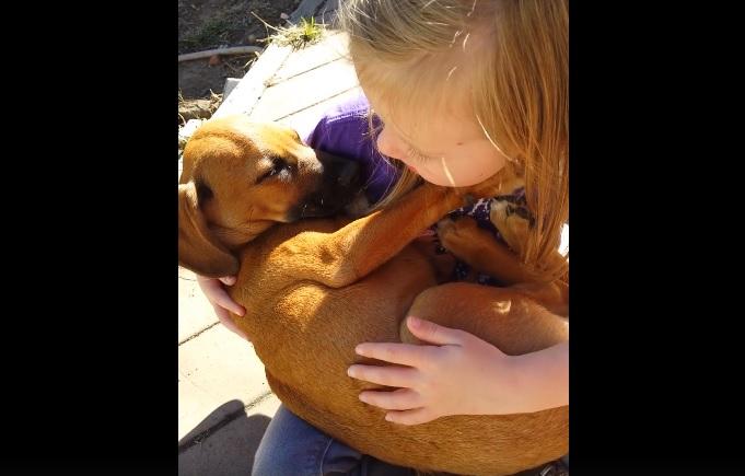 Niña enternece al mundo cantándole una canción de cuna a su cachorro - VIDEO