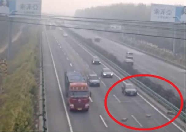 Ovejas causan terrible accidente de tránsito en China
