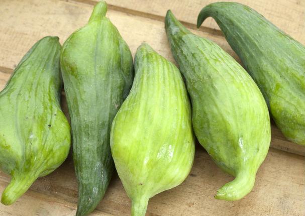 Caigua: Conoce los beneficios de este adelgazante natural