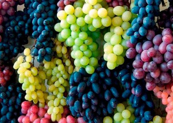 Consume uva todos los días y notarás estos beneficios en tu cuerpo