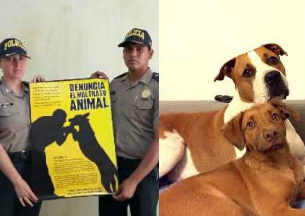PNP inauguró el Departamento de Protección Y Bienestar Animal