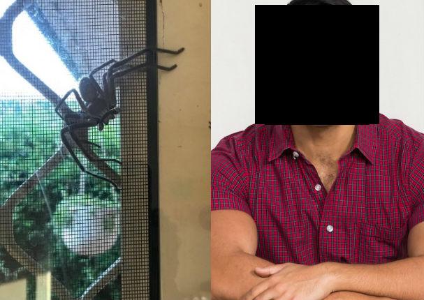 Araña gigantesca asombra a famoso conductor de TV y causa polémica en redes (FOTO)