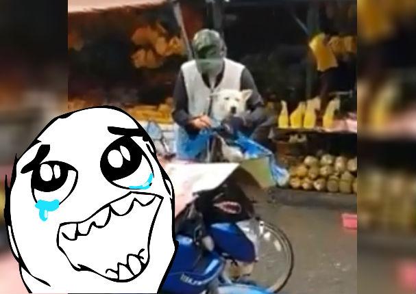 Facebook Viral: Hombre tiene tierno gesto con su mascota y enternece a usuarios (VIDEO)