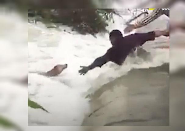 Facebook Viral: Hombres dan la vida por evitar que perro se ahogue (VIDEO)