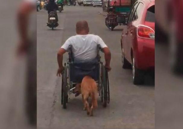 Facebook Viral: Perro que ayuda a su dueño en silla de ruedas conmueve al mundo (VIDEO)