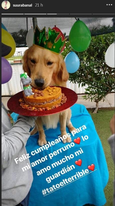 César Vega y Suu Rabanal : Así fue el curioso cumpleaños del engreído de su casa (VIDEO)