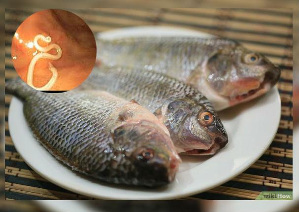 Salud: ¿Qué sucede con mi cuerpo si como pescado crudo?
