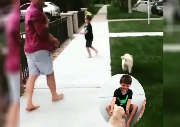 Instagram Viral: Le regalan un perrito y su reacción sorprendió a sus padres (VIDEO)
