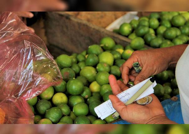 Precio del limón permanecerá alto hasta diciembre
