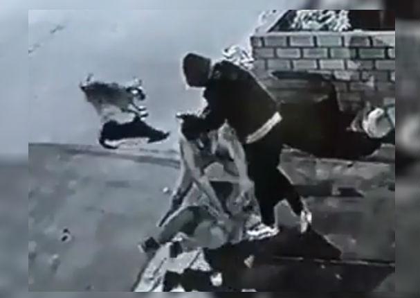 Conoce a gringo: El perro que salvó a un hombre de ser asaltado
