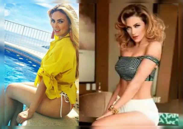 Aracely Arámbula cocina en bikini y enamora a todos (VIDEO)