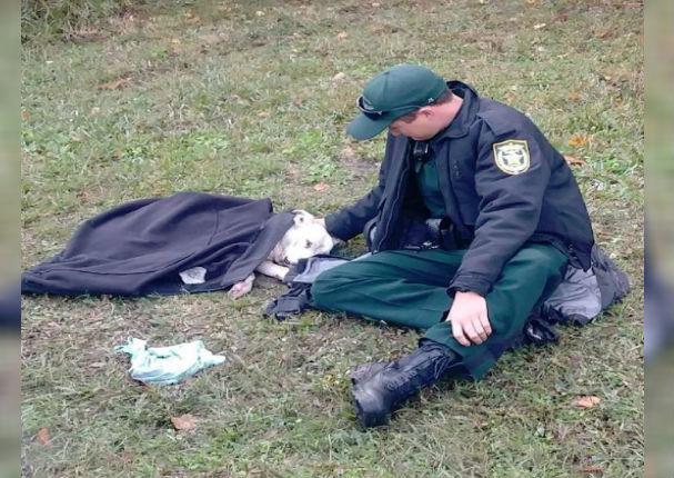 Facebook: Policía se gana la admiración de miles al ayudar a un perro atropellado