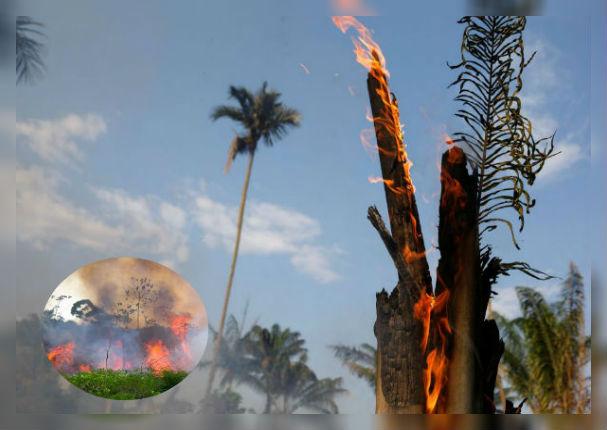 Así luce la Amazonía tras terrible incendio forestal