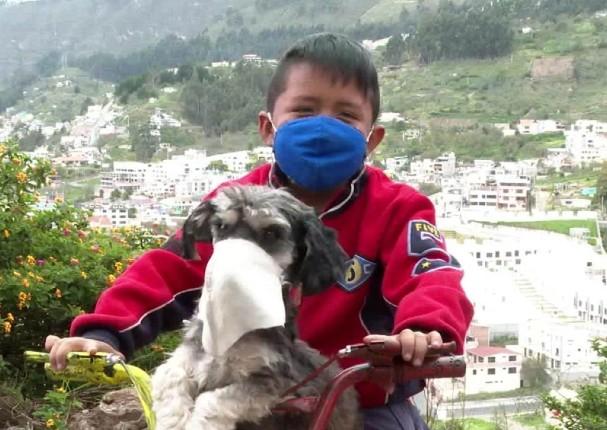 Niño enternece las redes al ponerle mascarilla a su perro para protegerlo del Covid