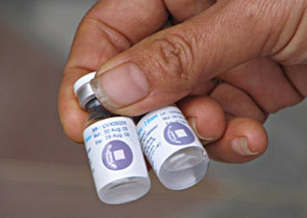 OMS asegura que existen 6 vacunas en fases muy avanzadas