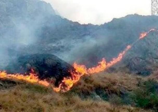 Agentes forestales controlan incendio en Machu Picchu