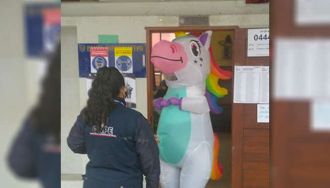 Mujer fue a votar con disfraz de unicornio   VIDEO